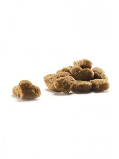Go Care Royal Sterilizată - Mâncare pentru pisici sterilizate sau cu tendințe de îngrășare